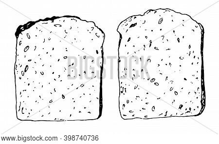 Sketch Black Contour On A Realistic Sketch , Isolated On White. Set Of Vector Drawing Of A Crunchy P