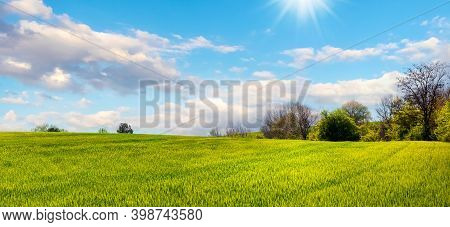 Field With Green Grass And Trees In The Distance In Spring In Sunny Weather, Blue Sky With White Clo