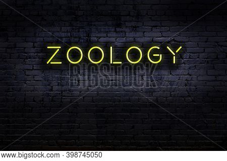 Neon Sign With Inscription Zoology Against Brick Wall. Night View