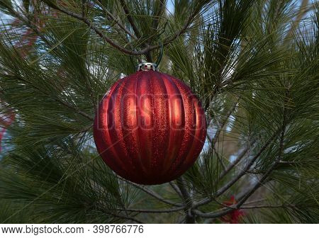 Red Ball On Tree Branch As Christmas Decoration