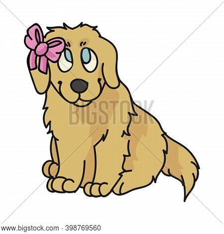 Cute Cartoon Golden Retriever Puppy With Cute Bow Breed Vector Clipart. Pedigree Kennel Doggie Breed