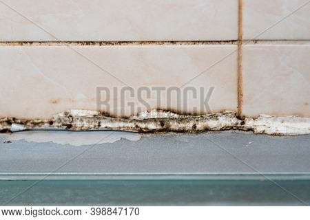 The Silicone Sealer Is Mildewed. Mold In The Shower Stall. Dampness And Humidity