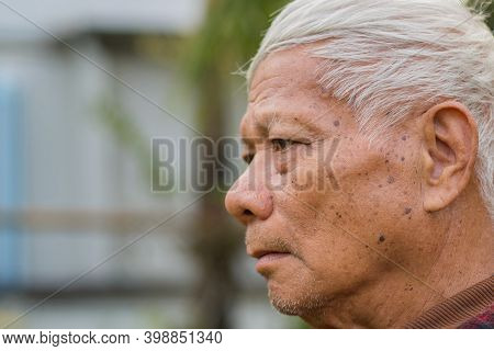 Close-up View Side Of Face Senior Man Looking Away While Standing In A Garden.