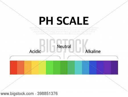 The Ph Scale Universal Indicator Ph Color Chart Diagram. Vector Illustration With Ph Scale.