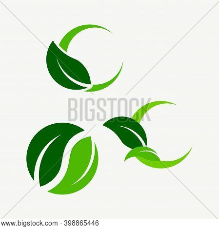 Abstract Leaves.  The Concept Of Sustainable Energy.  Logo For Agriculture, Forest Conservation, Gre
