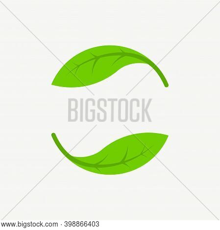 Abstract Ecology Nature Leaf Logo Design Vector Template. Green Leave Icon Isolated On White Backgro