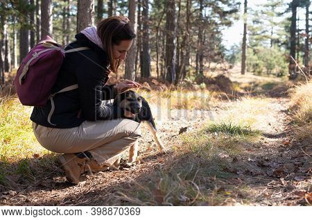 Woman And Her Pet Dog In Nature. Woman Playing With Dog In Nature. Close Up Of Woman And Dog In Natu
