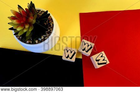 Www On Wooden Cubes On A Multi-colored Background .next To It Is A Flower In A White Pot .internet W