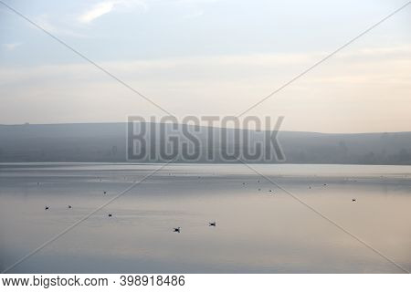 Lots Of Copy Space In This Atmospherically Hazy Image Of Many Birds Sitting On Calm Water. Distant M