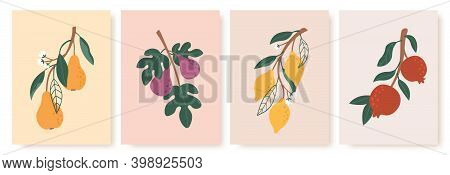 Abstract Fruit Poster. Modern Prints With Summer Fruits, Leaves And Flowers. Lemon, Pear And Fig Bra