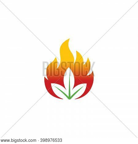 Organic Flame Leaf Fire Leaf Vector Flower Sign With Fire Ignite Leaf Healthy Logo