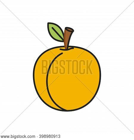Apricot, Simple Vector Icon, Filled Outline. Apricot