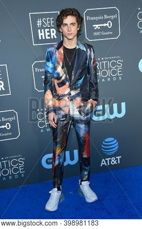 LOS ANGELES - JAN 13:  Timothee Chalamet {Object} arrives for '24th Annual Critics' Choice Awards on January 13, 2019 0 in Santa Monica, CA