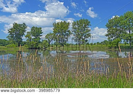 Prairie Pond On A Summer Day At The Goose Lake Prairie State Natural Area In Illinois