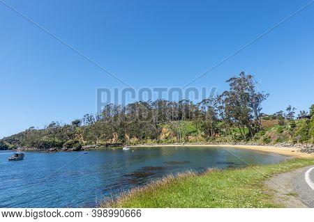 Scenic Beach Along Elgin Terrace Stewart Island, New Zealand