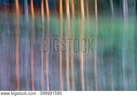 Nature Abstract Taken In Forest Using Intentional Camera Movement For Backgrounds And Conceptual Use