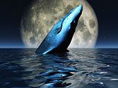 Whale on oceans surface with full moon poster