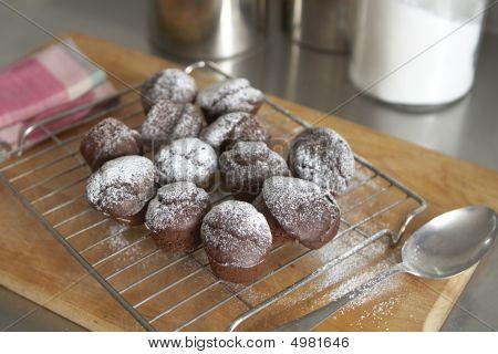 Freshly Baked Chocolate Cupcakes