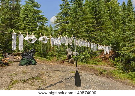 Drying Diapers In The Wilderness