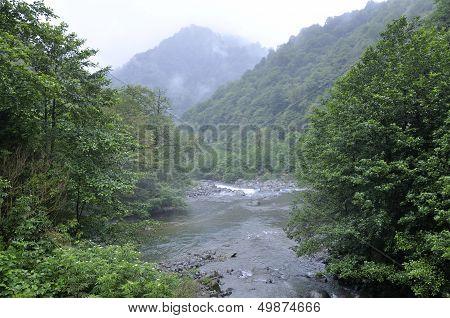 Mountain River, Landscapes