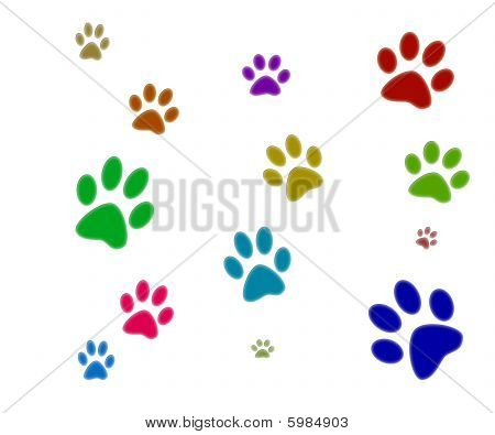 Three colorfull paw prints isolated with white background. poster