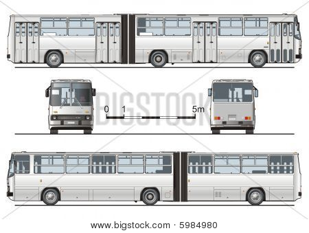 Vector hi-detailed urban bus