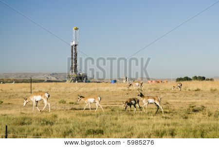 new oil and gas drilling