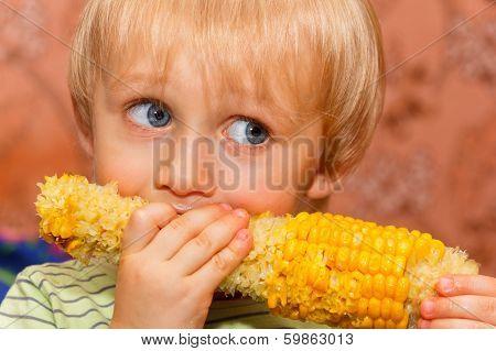 Young Boy Eating Corn