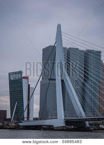 Erasmus Bridge Rotterdam, Netherlands Against Dark Sky