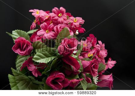 Roses bunch