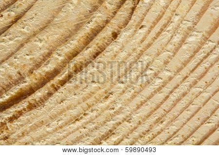 Closeup Of Rough Sawn Pine Tree Texture