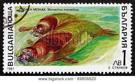 Postage Stamp Bulgaria 1991 Mediterranean Monk Seal, Marine Mamm