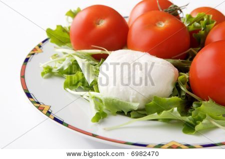 Mozzarella Cheese with tomato on a plate