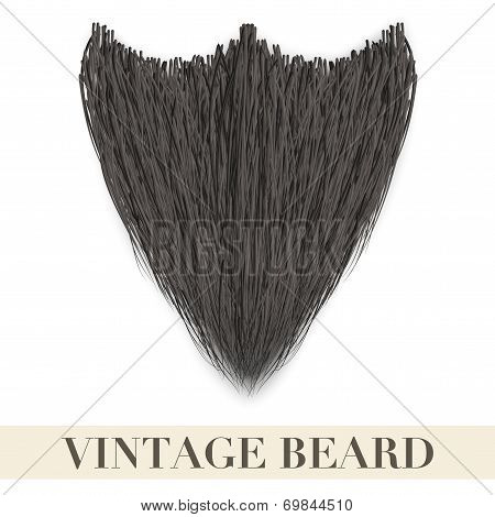 Realistic Black beard. Vector Illustration.