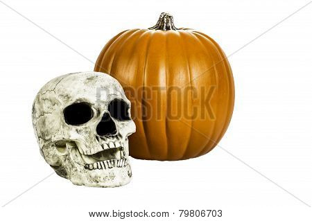 Skull And Pumpkin Isolated