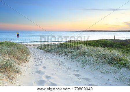 Soft sandy track leading down to Greenhills Beach Bate Bay at sundown. South Sydney Australia. poster