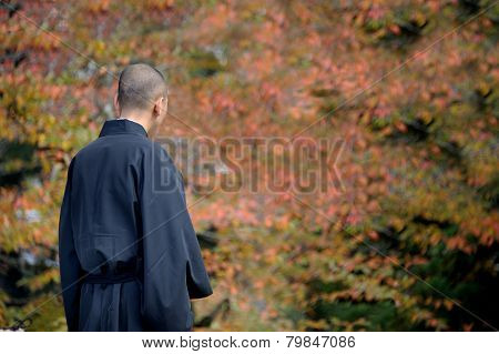 Monk At Temple