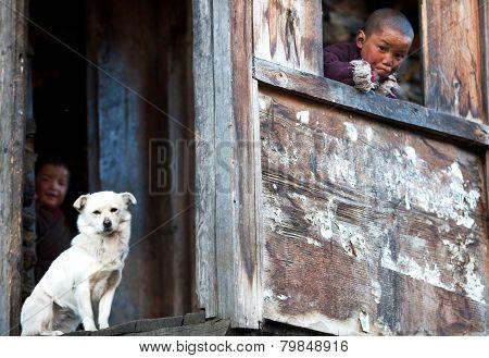 Tibetan Boys With White Dog