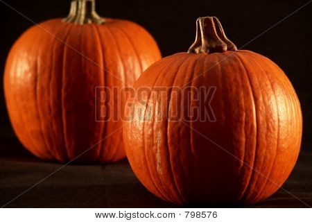 two pumpkins on black