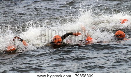 Lots Of Female Triathletes Swimming