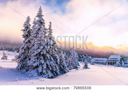 Winter landscape,  luxury ski resorts in Europe, beautiful pine trees around little houses on the mountains covered with snow,  beauty of wintertime nature
