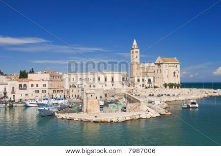 Panoramic view of Cathedral of the sea. Trani. Apulia. poster
