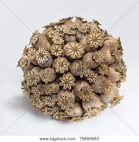 Ball Of Dried Poppy Heads