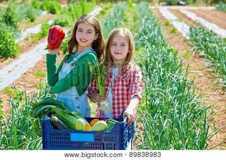 Litte kid farmer girls in vegetables harvest at orchard