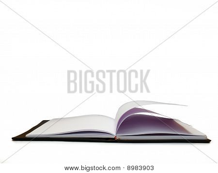Open book, diary with blank pages isolated over white background