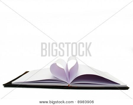 Opened book, diary with blank pages isolated over white background
