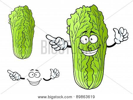 Healthy chinese character cabbage with happy face