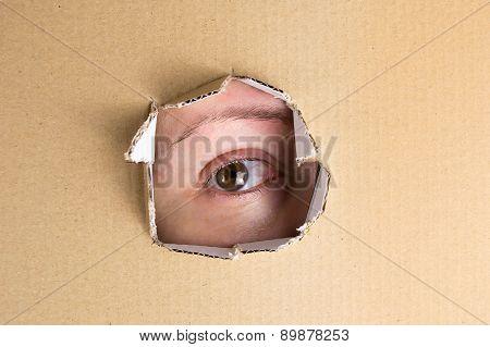 Eye Looking