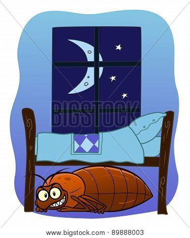 Bedbug Under Your Bed
