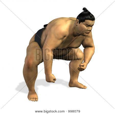Sumo Wrestler 1